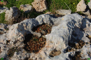 maltese islands limestone geology features