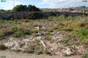 maltese countryside limestone walking