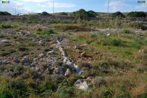 limestone fulgurites near Wied Qannotta, Zebbieh, Malta