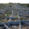 cart ruts tracks pairs ridges mystery clapham junction malta