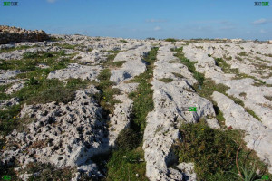 clapham junction cart ruts malta tracks ancient roadways