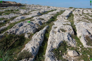 clapham junction cart ruts malta Phoenician chariots pathways roads romans greeks