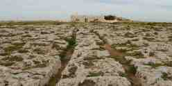 Clapham Junction Malta Cart Ruts