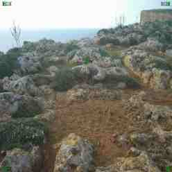 Cart Ruts - Cart Tracks - leading off a cliff top at Ras Il-Pellegrin (Fomm Ir-Rih) in Malta