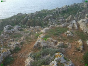 malta cart ruts over cliff top