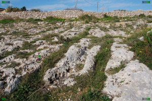 malta cart tracks old roadways europe