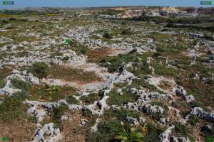 clapham junction malta limestone lines strange puzzling geology