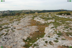 malta limestone terraces terracing mediterranean clapham junction