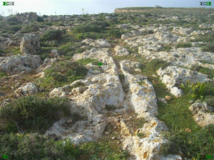 maltese cart ruts going off cliffs il Pellegrin