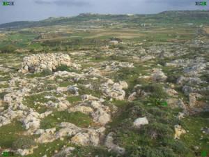 Fomm Ir-Rih bay il-Pellegrin headland Cart Ruts tracks malta