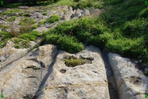 San Gwann cart ruts malta tracks maltese Tal-Mensija deep ridges