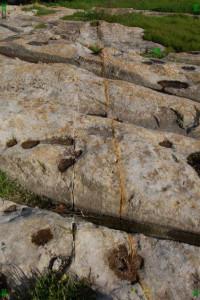 San Gwann cart ruts malta tracks maltese Tal-Mensija geology limestone lines