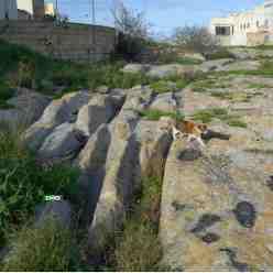 crazy Cart Ruts (Cart Tracks) Junction at San Gwann near St Julians in Malta