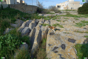 San Gwann cart ruts malta tracks maltese Tal-Mensija junction