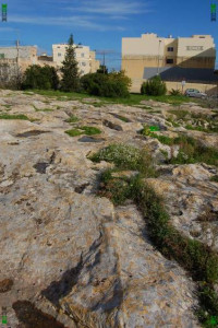 limestone geology malta cart ruts tracks